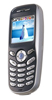 Ремонт Samsung X100